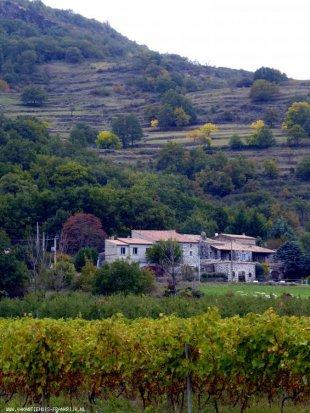 Vanaf de velden voor het huis Linquenda is te zien achter de stenen poort. Het linkerdeel is 'de Wielewaal', ook van ons
