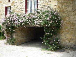 geurende mei roos eigen prive garage voor uw auto