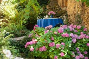 zitje in de tuin