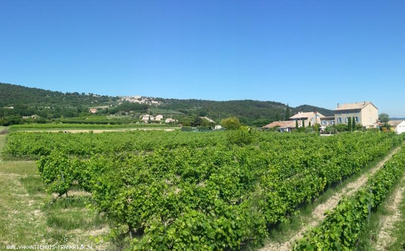 Vakantiehuis: Karaktervol vakantiehuis als deel van voormalige wijnboerderij met zwembad en tennisbaan aan de voet van de Mont Ventoux in de Provence. te huur voor uw vakantie in Vaucluse (Frankrijk)