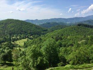 Uitzicht vanuit gite la Volane