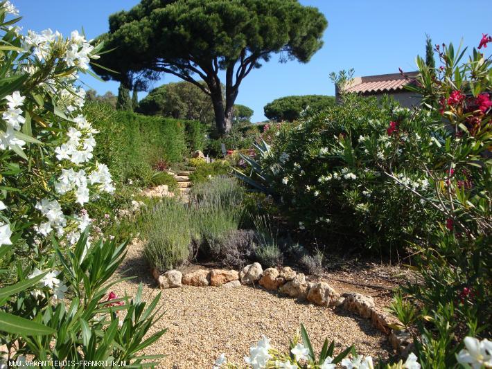 Vakantiehuis: gerieflijke vakantiewoning (vue mer) vlakbij St Tropez te huur voor uw vakantie in Var (Frankrijk)