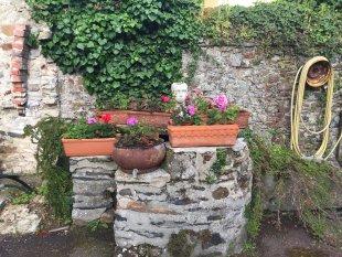 De put op de cour <br>De cour is altijd vol met bloemen. De oude waterput, waar nog steeds water in staat, is een blijvende herinnering aan hoe hier vroeger werd geleefd