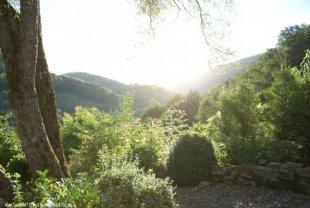 terras <br>Het terras heeft maximale privacy. Er is veel ruimte, een picknickbank, er is een BBQ. En het uitzicht is prachtig.