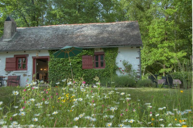 Vakantiehuis: Volledig afgesneden van de bewoonde wereld, diep tussen de heuvels en in de bosrijke gebieden van de Corrèze, ligt een piepklein en idyllisch huisje.. te huur voor uw vakantie in Correze (Frankrijk)