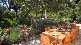 Tafelen onder een fruitboom. Op het terras op het Zuid-Oosten kunt u gezellig eten onder de Néflier du Japon met zijn heerlijke oranje vruchten.