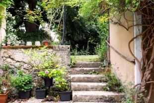 Trapje vanaf terras naar de tuin <br>De tuin is volledig ommuurd en ligt hoger dan het terras. Er staat een eeuwenoude lindeboom evenals palmbomen en bananenbomen, een laurier en een Catalpa.