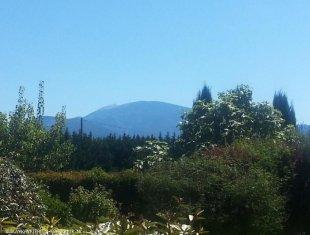 Zicht op de Mont Ventoux vanuit de tuin van Viognier