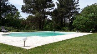 Zwembad (6x13,5 mtr) met romaanse trap