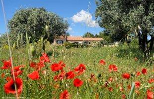 Provençaalse villa