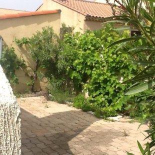 tuin rechts aan de zijkant van het huis