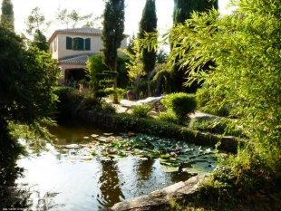 Vijver Vijver met de villa op de achtergrond
