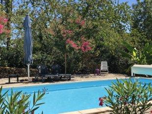 Het zwembad met veel schaduw en bomen.