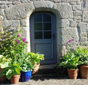 Lush Hostas outside the front door