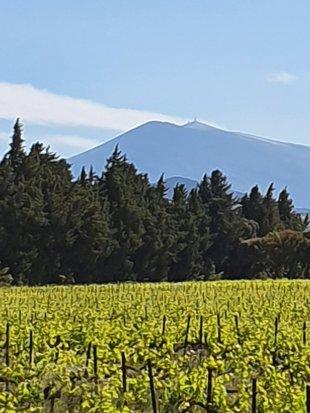 de Mont Ventoux <br>uitzicht vanaf het terras