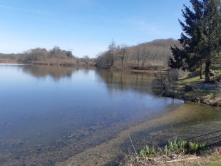 het meer na 50 meter wandelen <br>het meer is nog mooier als u er naartoe wandelt en er omheen!